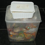 Collect your kitchen scraps, the small container is for the worm farm.